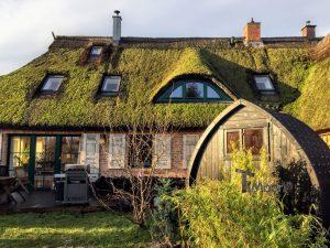 Garden sauna igloo 3